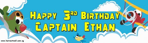 Planes Birthday Customized Banner