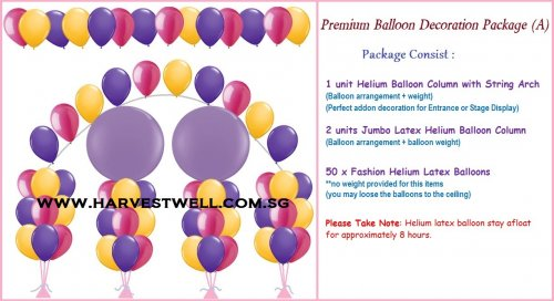 Premium Balloon Decoration Package (A)