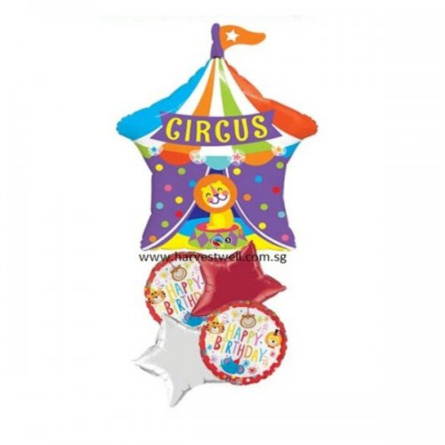 Circus Lion Birthday Balloon Package