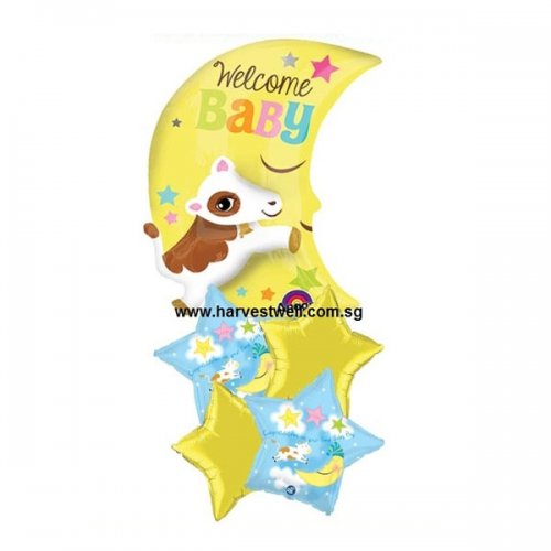 Congrats On Your New Baby Boy Multi Balloon Package