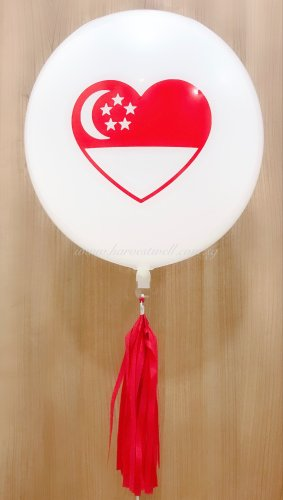 CELEBRATE SG53 Customized ORBZ Balloon