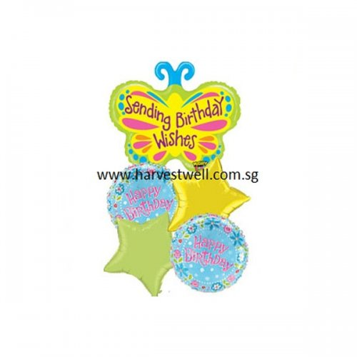 Birthday Greetings Butterfly Balloon Package