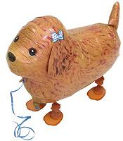 Walking Pet Dog Balloon - Toy Poodle