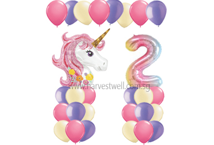 Unicorn Ombre Balloon Value Package