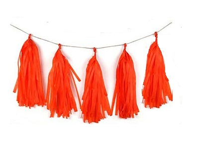 Orange Tissue Tassel Garland