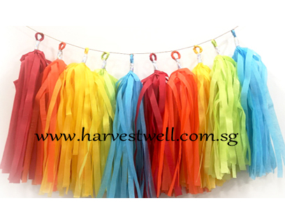 Rainbow Themed Tassel Garland
