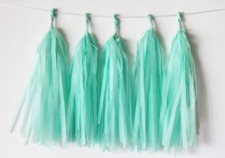 Mint Green Tissue Tassel Garland